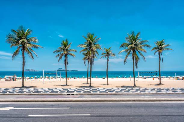 palmen am strand von ipanema mit blauem himmel, rio de janeiro - rio de janeiro stock-fotos und bilder