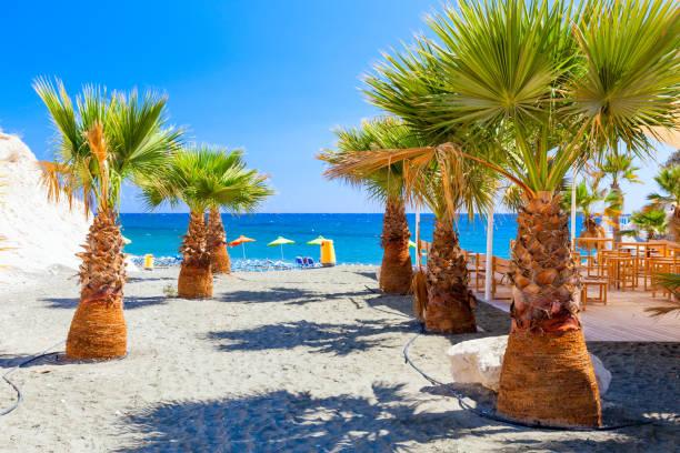 palms, sea and a beautiful beach near governors beach, cyprus. - cyprus стоковые фото и изображения