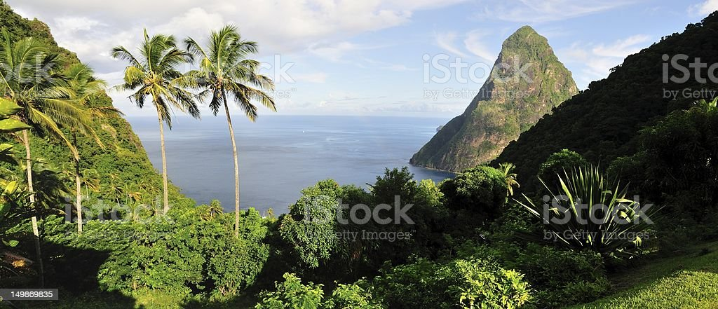 Palms Trees and Pitons stock photo