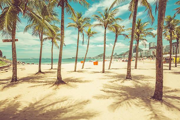 Palms with shadows on Copacabana Beach ,Rio de Janeiro Palms with shadows on Copacabana Beach in Rio de Janeiro, Brazil. Vintage colors lagoa rio de janeiro stock pictures, royalty-free photos & images