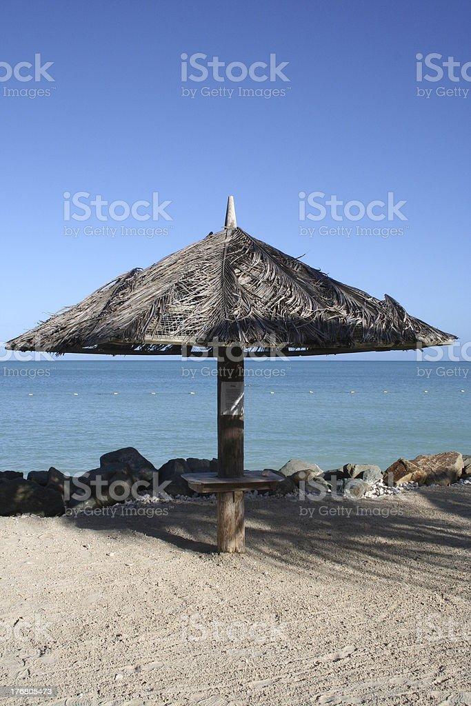 Palmtree Sunshade royalty-free stock photo