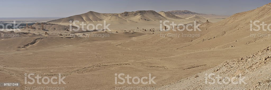 Palmyra desert royalty-free stock photo