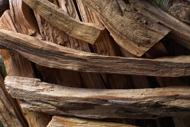 palo santo wood closeup stock photo