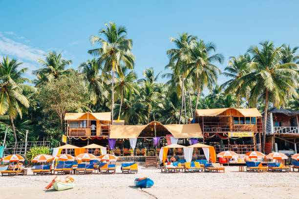 Palolem beach with tropical palm trees in Goa, India stock photo