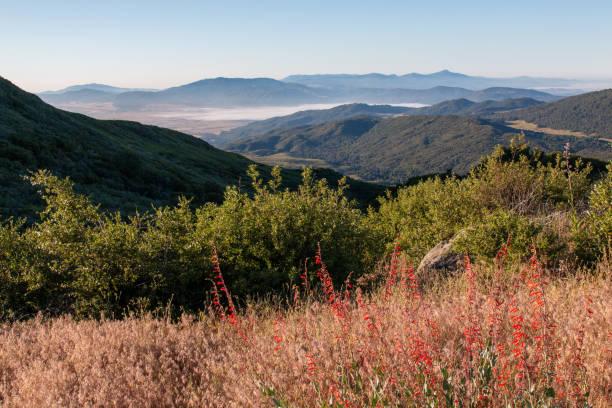 Palomar Mountain stock photo