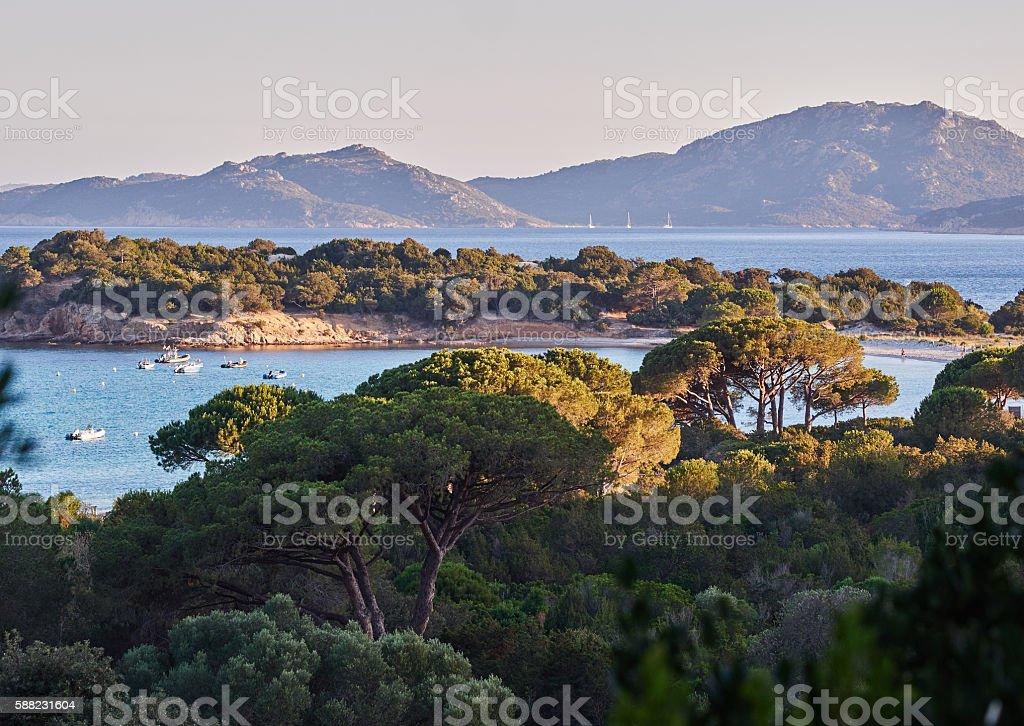 Palombaggia beach stock photo