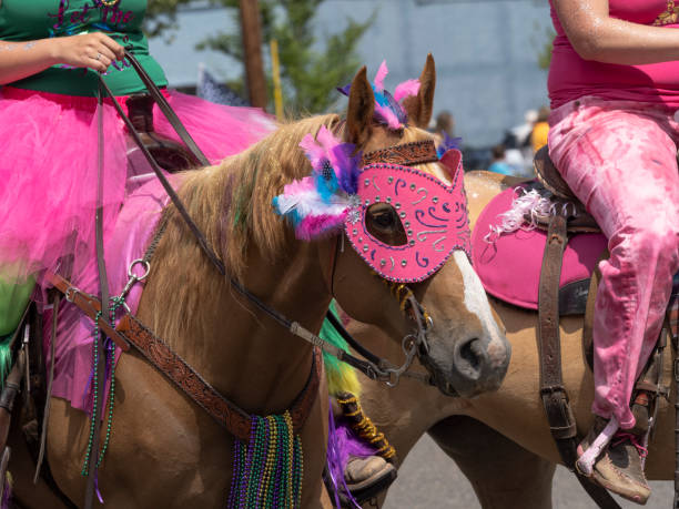 Palomino horses riders costumes sportsmans holiday parade sweet home picture id1164439045?b=1&k=6&m=1164439045&s=612x612&w=0&h=vtnvpit2gsocubfwzl1twdhkbpbv1 syfvpnoccrdhu=