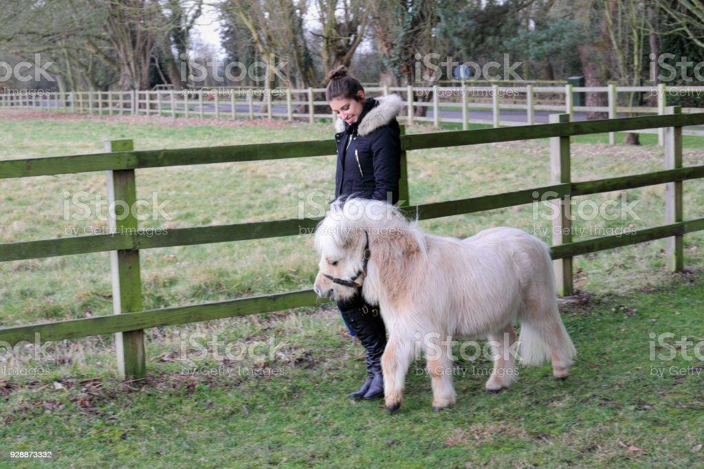Palomino miniature Shetland pony white mane with Russian outdoor girl stock photo