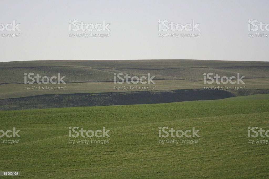 Palouse in Spring royalty-free stock photo