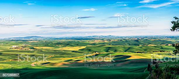 Photo of Palouse Rolling Hills (wheat)