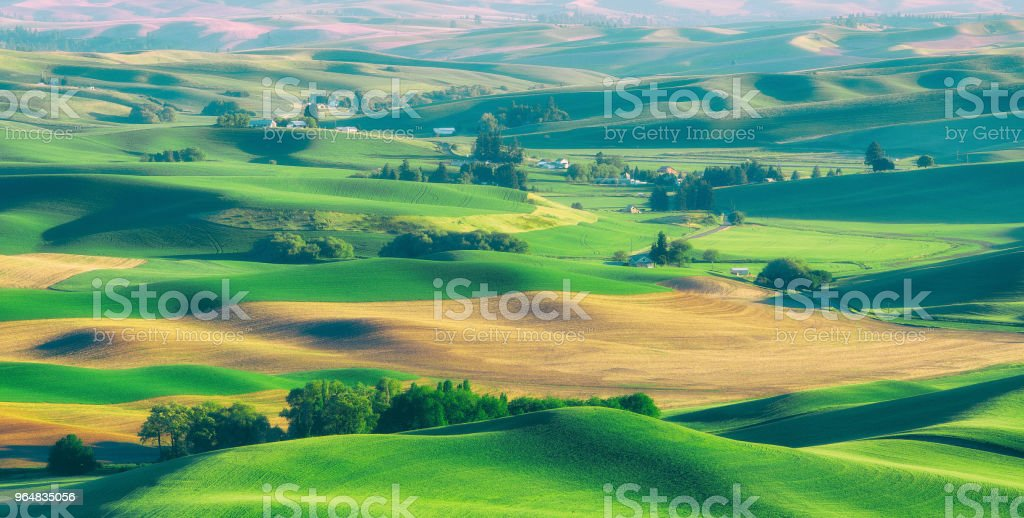 Palouse Rolling Hills royalty-free stock photo