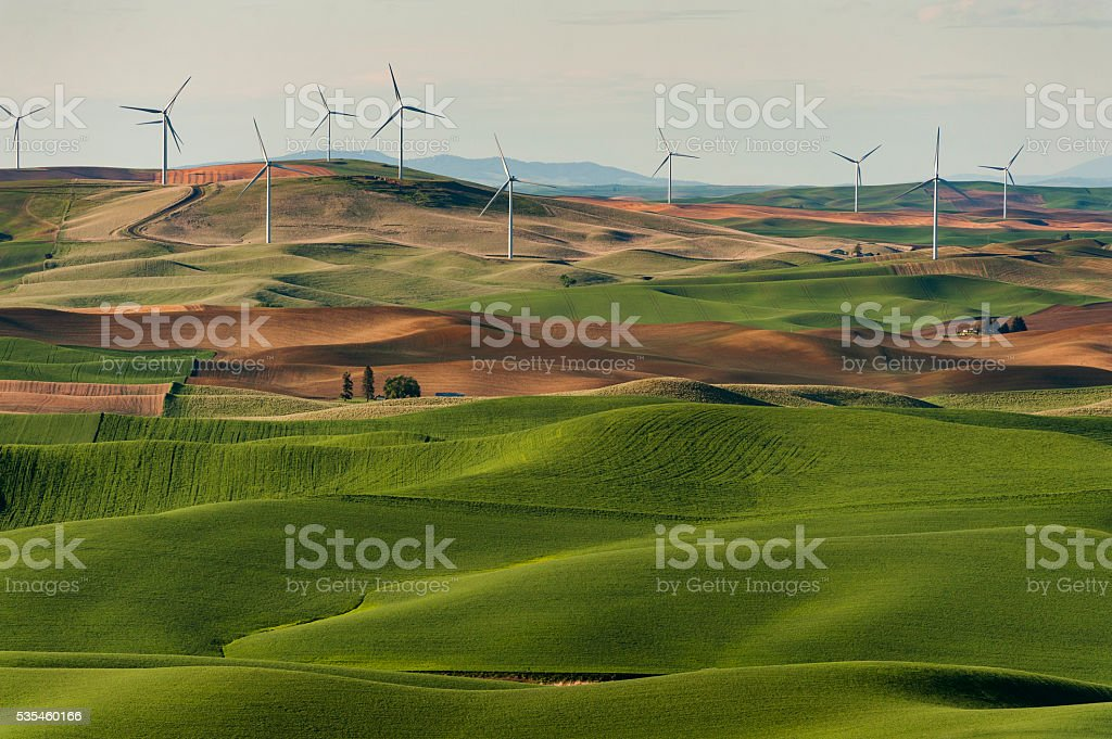 Palouse Wind Turbines stock photo