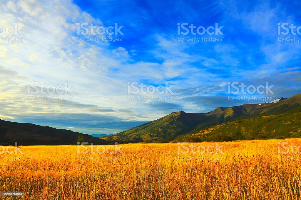 Pampa Estepe, patagonia Wilderness landscape stock photo