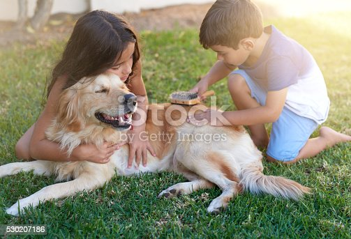 Shot of a little boy and his sister brushing their dog's coat in the backyard at home