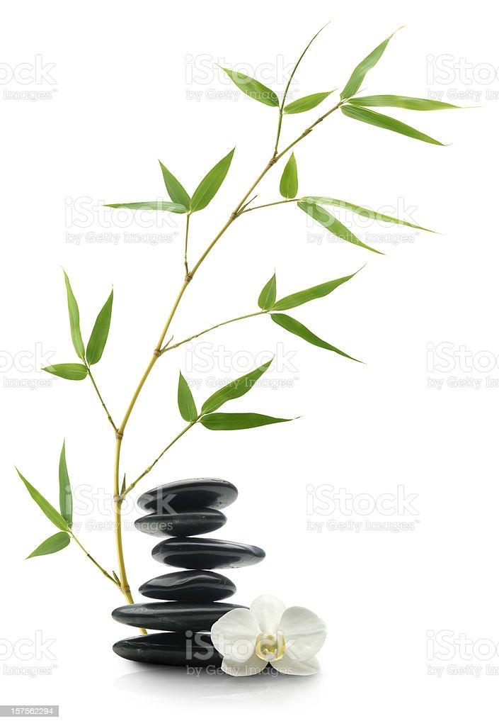 Pampered Balance royalty-free stock photo