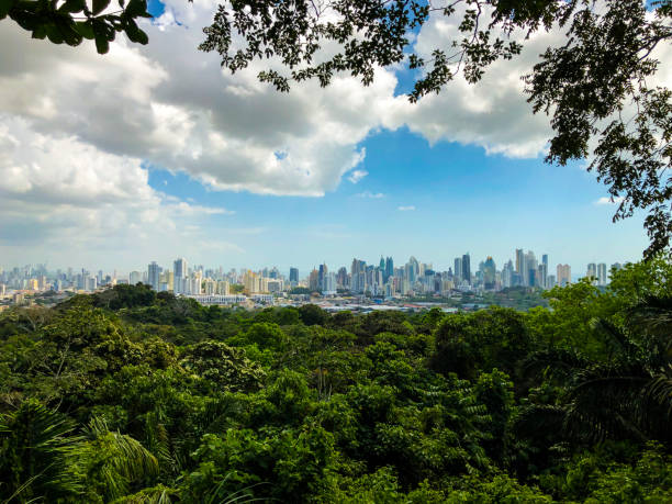 panama city in januari 2019 - midden amerika stockfoto's en -beelden