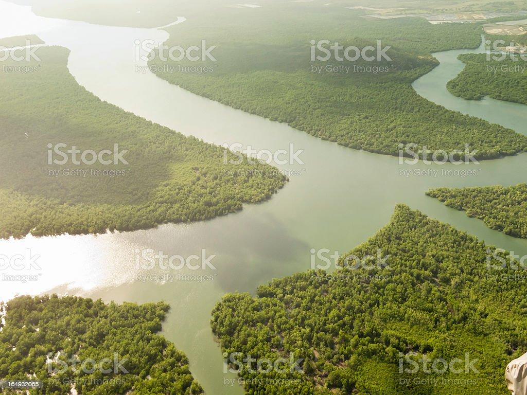 Panama ´ s Regenwald – Foto