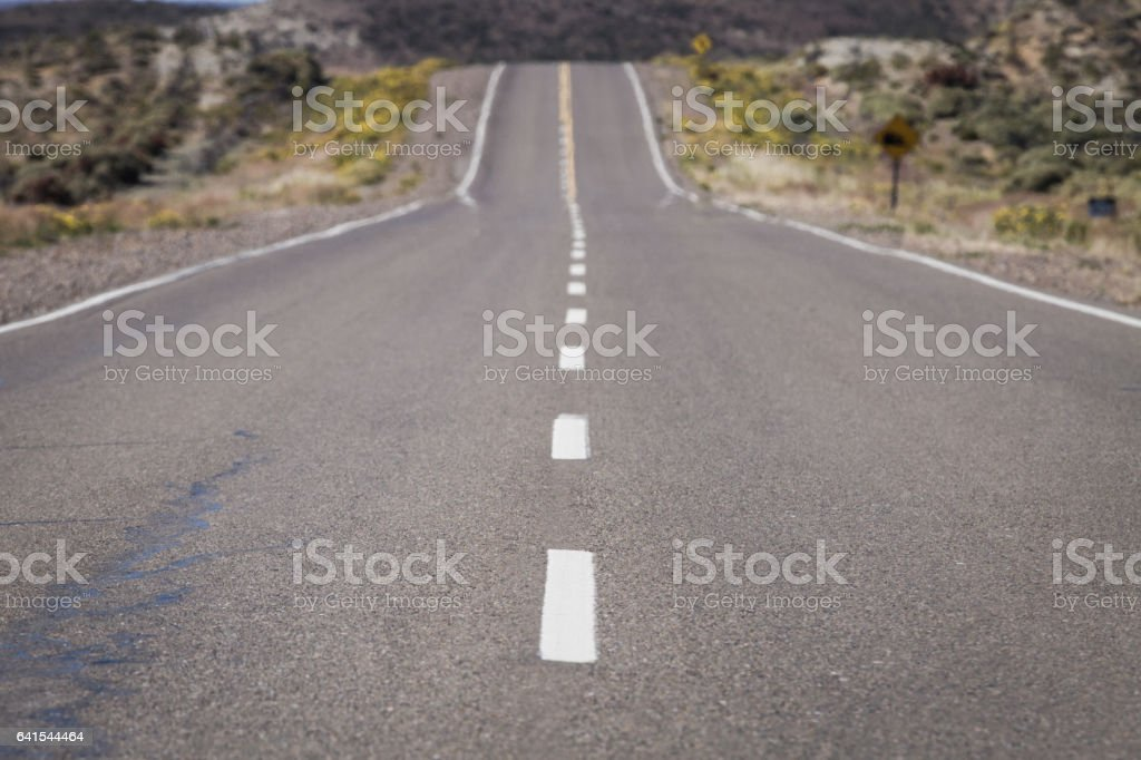 PanAmerican Highway foto