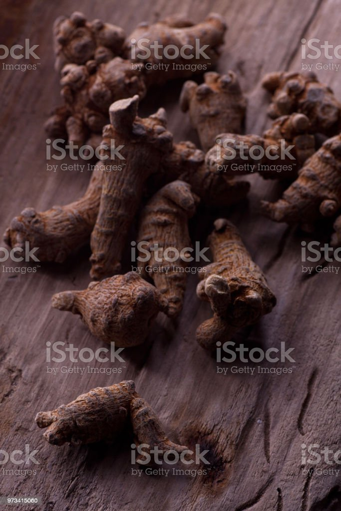 Panax notoginseng stock photo