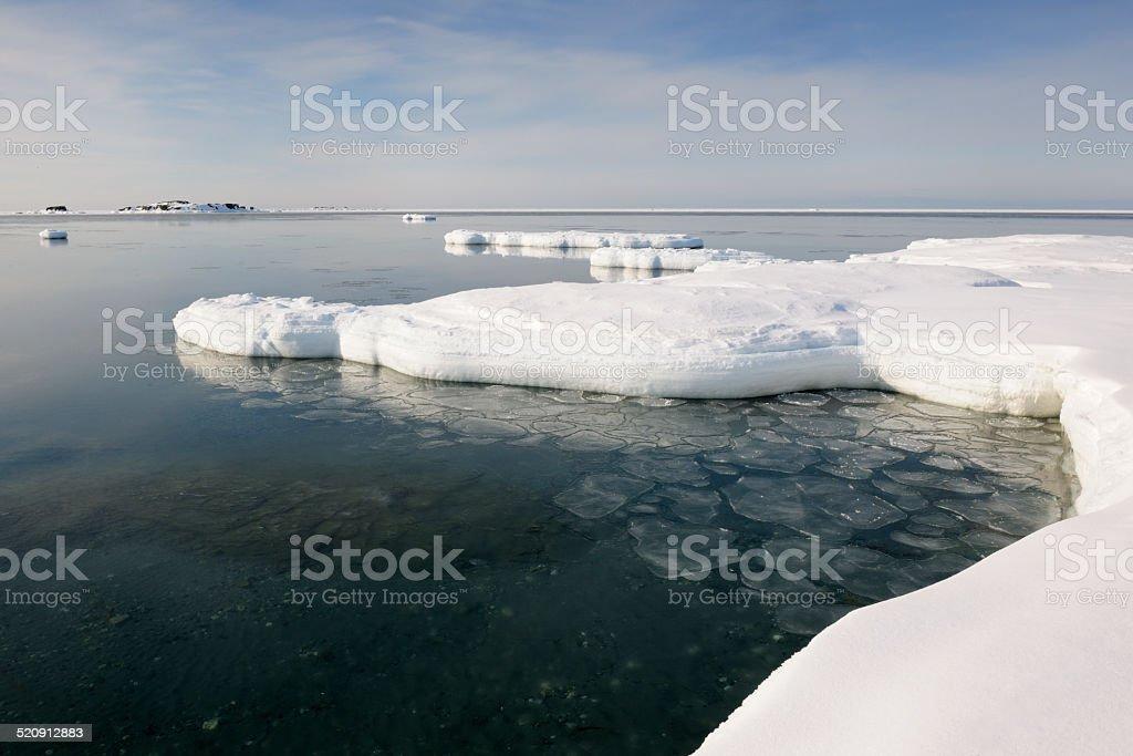pancake ice starting to freeze. stock photo