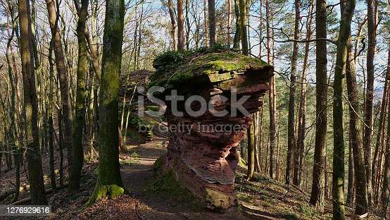 Pancake-formed washed-out brown sandstone at hiking trail in the woods in Palatinate Forest, Rhineland-Palatinate, Germany at sunny spring day.