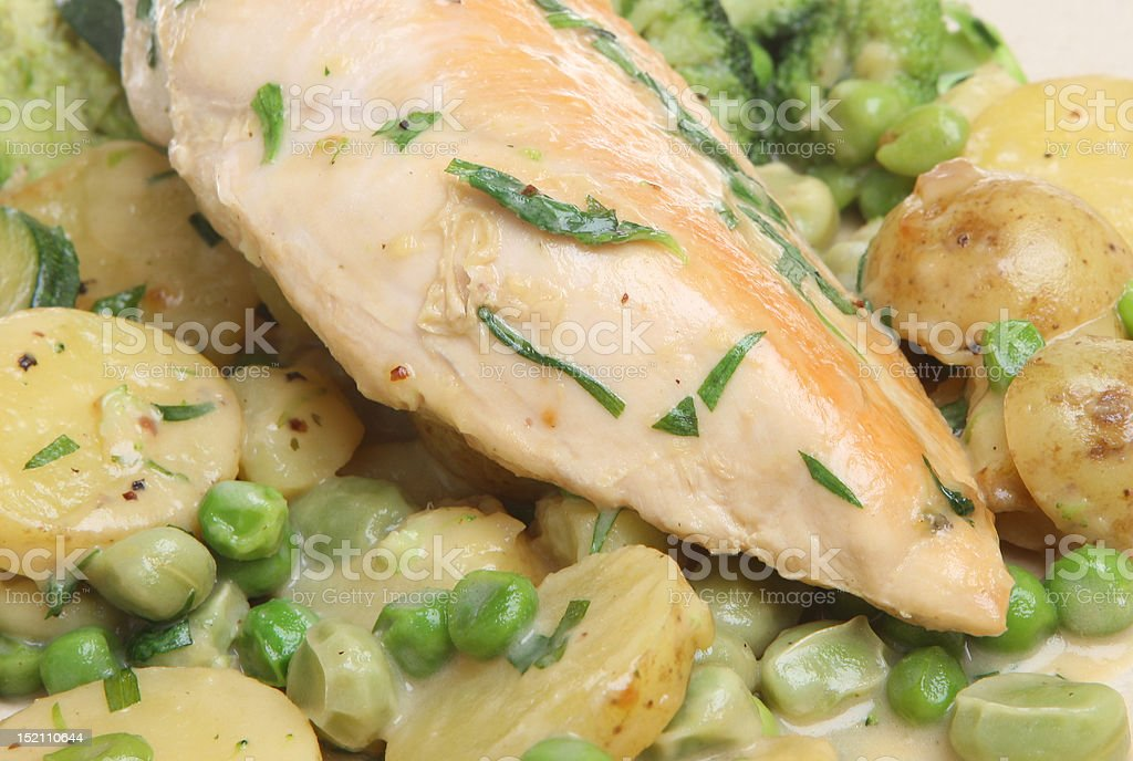 Pan-Fried Chicken Breast with Vegetables royalty-free stock photo
