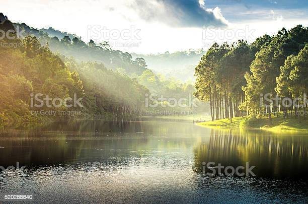 Photo of pang ung , reflection of pine tree in a lake
