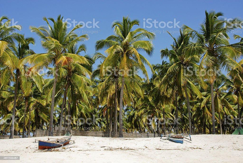 Pangane Beach, Mozambique stock photo
