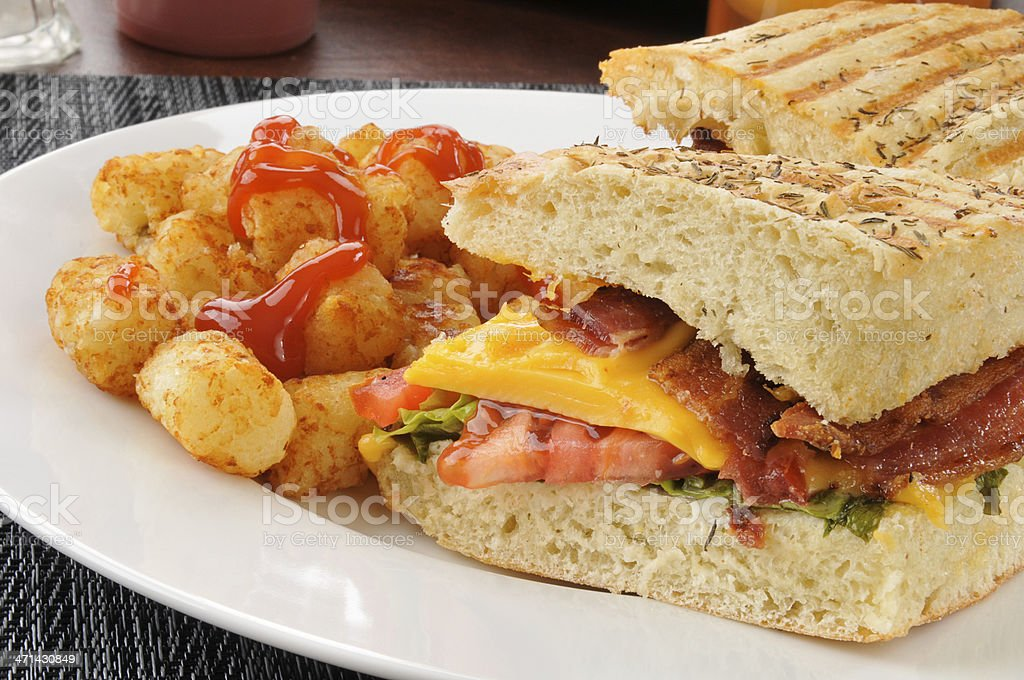 BLT Panini with cheese royalty-free stock photo