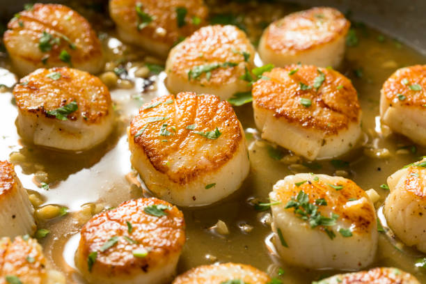 Panned Seared Scallops in Broth Panned Seared Scallops in Broth Ready to Eat mollusk stock pictures, royalty-free photos & images