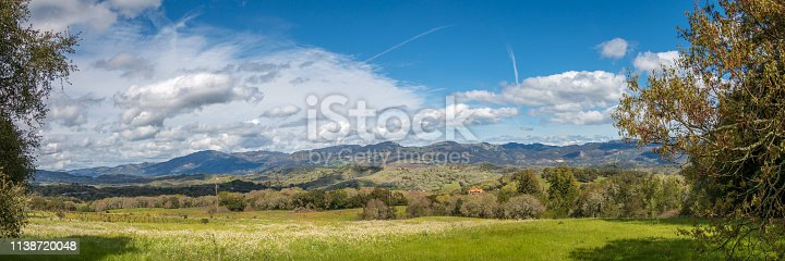 A panoramic of a look across a large valley. White and yellow flowers are in the foreground. Trees, vineyards, houses and fields are in the mid ground. Mountains, blue sky and clouds are in the back.