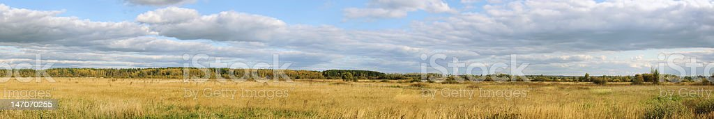 Panorama a field and the sky royalty-free stock photo