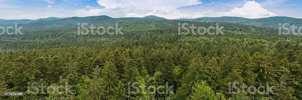 Panorama Bavarian Forest stock photo