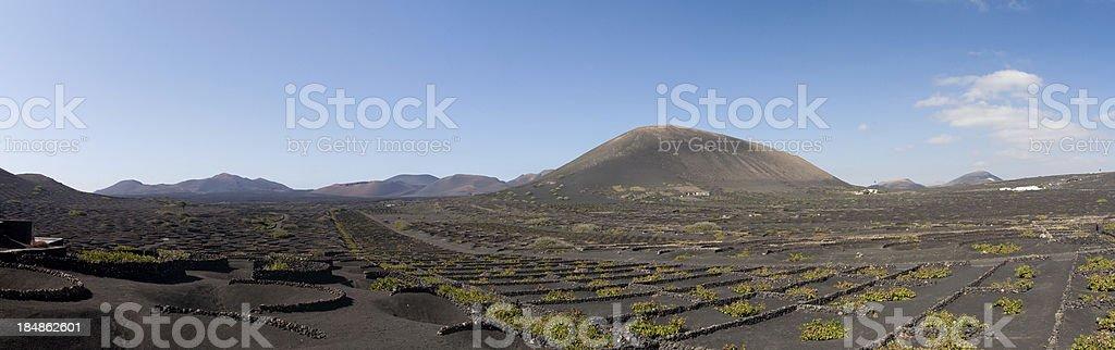 Panorama from La Geria stock photo
