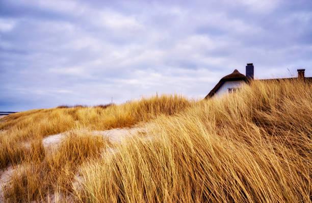 panorama vom haus hinter den dünen an der ostsee. - wellness ostsee stock-fotos und bilder