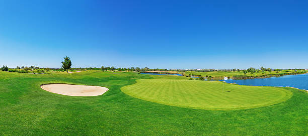Panorama golf course lush grass. On the lake. stock photo