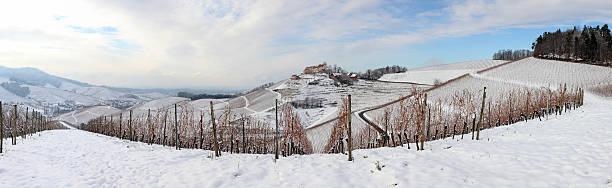 panorama im winter mit Schnee Berge und das Weingut Black Forest – Foto
