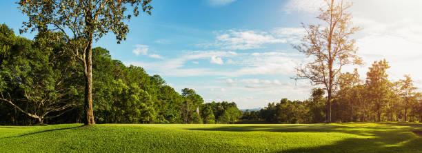Panorama Landschaft Golf crouse mit Sonnenlicht – Foto