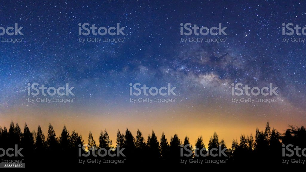 Panorama landscape with milky way, Night sky with stars and silhouette of pine tree stock photo