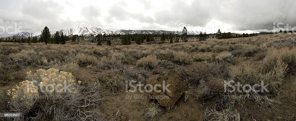 Panorama, Mammoth Mountain royalty-free stock photo