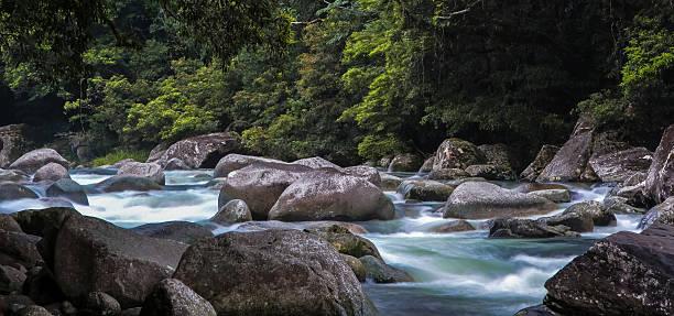panorama mossman gorge, daintree national park, australia - schönste reiseziele der welt stock-fotos und bilder