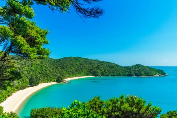 파노라마 해변, 아벨 태 즈만 국립 공원, 뉴질랜드 1 - 태즈먼 해 뉴스 사진 이미지
