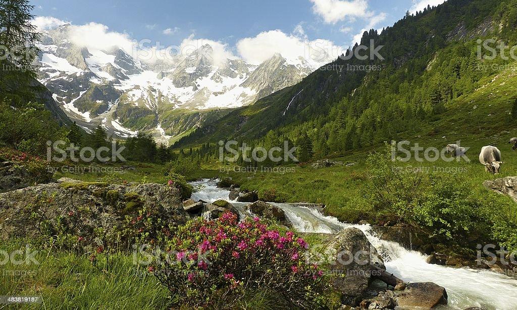 Panorama von einem fantastischen Landschaft – Foto