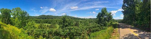Panorama of a forest and hilly vista in the summer stock photo