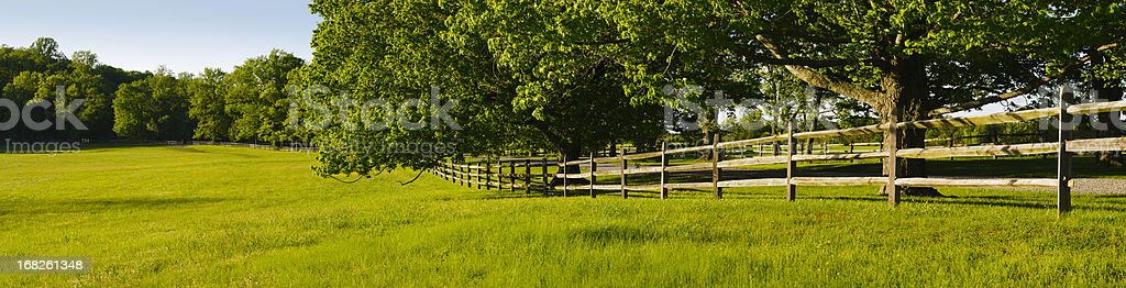 XXXL: Panorama of a green field and fence royalty-free stock photo