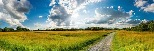 panorama of a meadow surrounded by forest - radwege deutschland stock-fotos und bilder