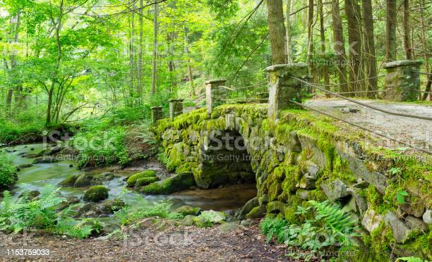 Photo of Panorama of a Moss Covred Antique Stone Bridge, Great Smokies Mountain National Park