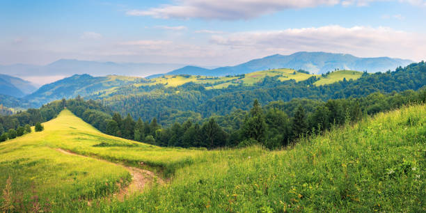 panorama of a summer countryside in mountains stock photo