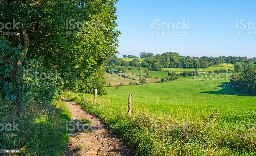 Panorama of a sunny green meadow on a hill stock photo