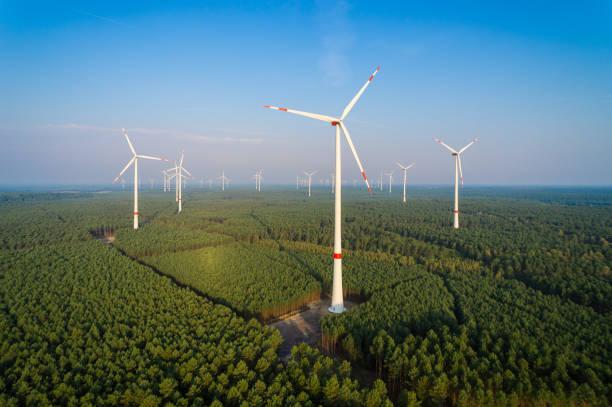 panorama eines windparks im wald - tim siegert stock-fotos und bilder